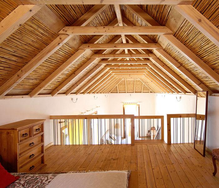 termitas asturias
